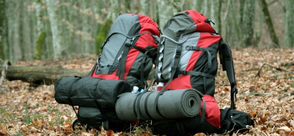 Backpacks in the leaves.